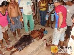 Militares da Guarda Presidencial matam cidadã na zona do Benfica